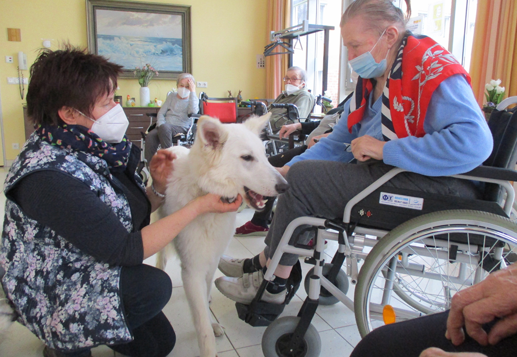 ASB_News_2021_Tiertherapie04.jpg