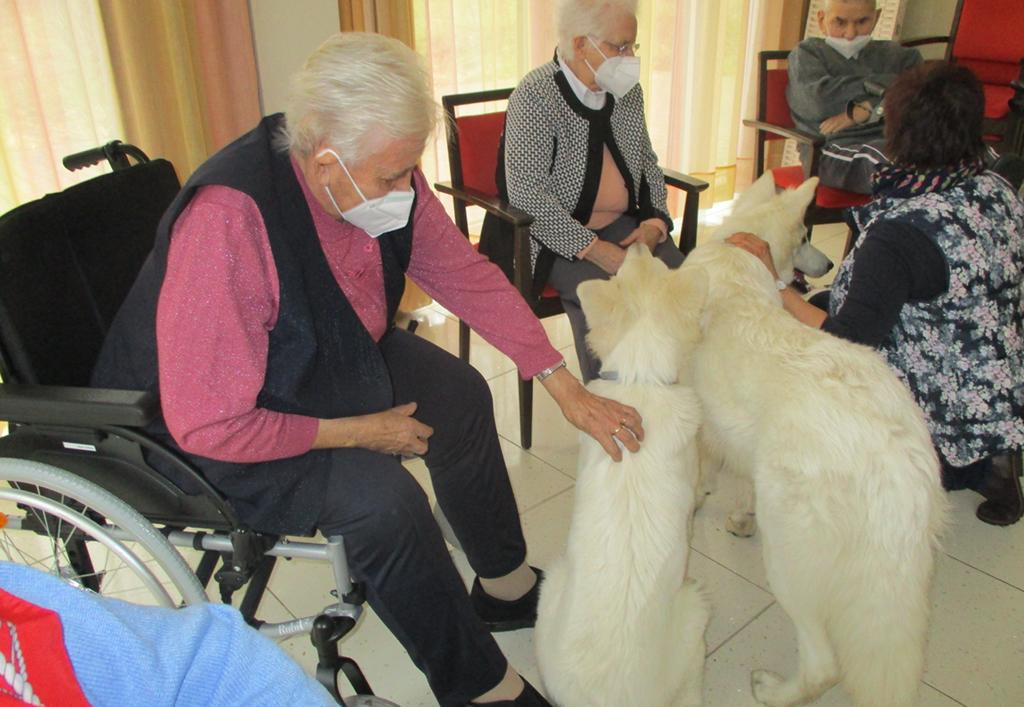 ASB_News_2021_Tiertherapie03.jpg