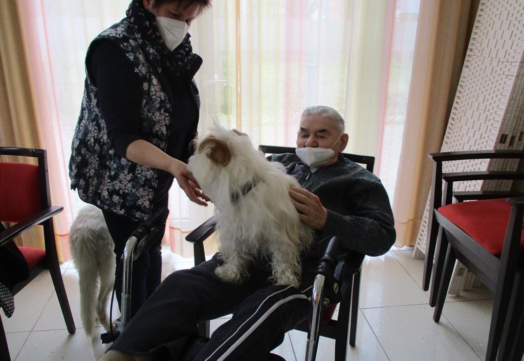 ASB_News_2021_Tiertherapie01.jpg